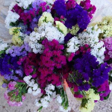 flors pons