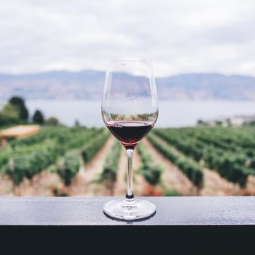 Vins, caves i sidra